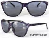 Óculos de sol novos do Cp com luz polar Eyewear da alta qualidade especial da pintura