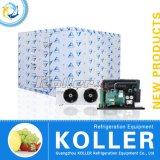 Koller Kühlraum mit Mono-Block Condensing Unit