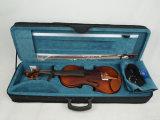 BV/SGS Bescheinigungs-Lieferant---Alle feste gemäßigte helle Flamme-Ahornholz-Violine
