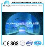Het aangepaste Grote Transparante AcrylAquarium van de Tunnel van het AcrylProject van de Tunnel