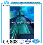 Grande acquario acrilico trasparente personalizzato del traforo del progetto acrilico del traforo