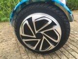 새로운 다채로운 2개의 바퀴 지능적인 각자 균형을 잡는 스쿠터