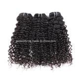 미국 Guaranteed Quality Hair Bundle (FDX-YY-KBL)에 2-3 일