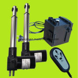 12V C.C. 24VDC Linear Synchronous Actuator Motor para Electric Bed, Beauty Bed, Electric Sofa (FY011)
