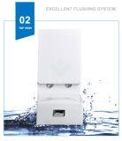 Weidansi en céramique lavent vers le bas la toilette d'une seule pièce de courroie (WDS-T6101)