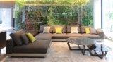 Sofa modulaire personnalisé moderne de Kaviar pour la salle de séjour (MS110.01)