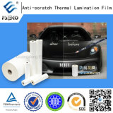 Pellicola di laminazione termica Graffiare-Resistente (33mic)