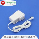 12W Plug AC DC Adapter com UL FCC DOE VI