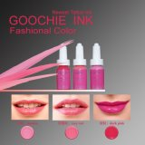 Goochie Coscmetics Tattoo Eyebrcow 또는 Ecip Permanent Makecup Ink