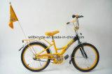 Una bicicletta da 20 pollici per 10 anni