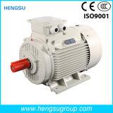 Электрический двигатель индукции AC Ye3 110kw-2p трехфазный асинхронный Squirrel-Cage для водяной помпы, компрессора воздуха