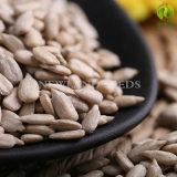 O girassol chinês da origem 2016 semeia sementes
