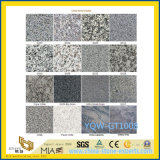 Kitchen及びBarthroom Flooring/Wallのための灰色かBlack/White Stone Granite Tile