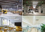 El precio de fábrica de China LED enciende las luces del tubo del LED para el hogar