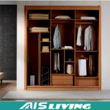 중국 주문품 싼 옷장 옷장 (AIS-W012)