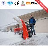 De Verhuizer van de sneeuw/de Pottenbakker/de Sneeuwblazer van de Sneeuw