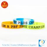 Bracelet en caoutchouc de segment coloré chaud de vente dans la qualité