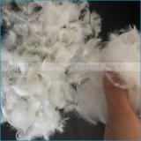 Piuma bianca dell'oca lavata alta qualità all'ingrosso