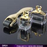 Dr31 3 1 negli aghi Microneedling Dermaroller del rullo 180/600/1200 di Derma dal fornitore