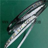 168LEDs/M Superbright 2835의 LED 지구