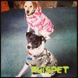 Camo Hoodie Haustier-Hundekleidung