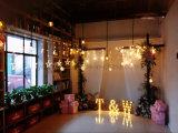 El día de fiesta ligero decorativo enciende cartas ligeras de la Navidad LED de la carpa
