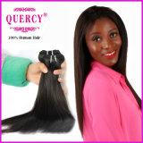 Cheveu droit normal de Vierge humaine la plus populaire et bon marché la plus brésilienne de Remy de l'onde droite de cheveu (SW-029)