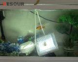 Piezas del almacenaje frío, lámpara del LED para el cuarto frío, ahorro de energía, venta caliente, alta calidad