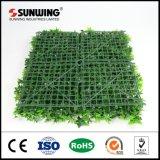 China-Lieferanten-schöne saftige künstliche Pflanzen für Wand-Dekor