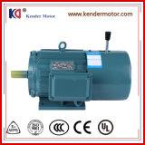 Asynchroner Permannet Magnet-Motor Yej Serie Wechselstrom-