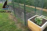 Kippegaas van het Staal van Sailin het Hexagonale Voor de Omheining van de Bescherming van het Fruit