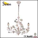 Lampadario a bracci verde di Flory +Pink di vendita superiore della Cina
