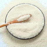 Pelotillas del retraso del sulfato del Complementar-Cinc del alimento