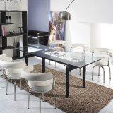 Cadeira de giro de Le Corbusier LC7 e cadeira do escritório
