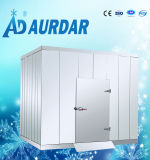 二重カラー鋼鉄が付いているクーラーのカスタマイズ可能なサイズの歩行か中国の低温貯蔵の価格の冷蔵室