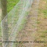 Sailin гальванизировало сетку плетения провода шестиугольную