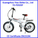 [36ف] تصميم جديدة 20 بوصة ثلج درّاجة كهربائيّة سمين/[غنغدونغ] درّاجة كهربائيّة