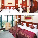 중국 공급자 호텔 거실 가구