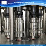Chaîne de production de mise en bouteilles remplissante automatique de l'eau minérale de qualité