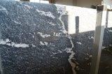 Nero Biascaの雪の灰色のSardoの花こう岩の敷石