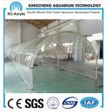 Acquario acrilico personalizzato dello strato curvo materiale acrilico