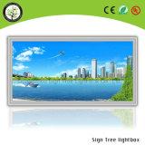 Marco de aluminio delgado Publicidad Caja de luz cartelera