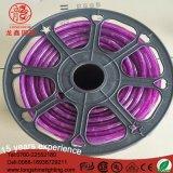 PVC 바디 방수 빨간 자주색 110V 36 Beads/M 지구 LED 밧줄 빛