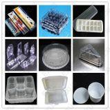 Vacío termo plástico del rectángulo de almuerzo del envase de alimento de la ampolla que forma haciendo la máquina