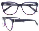 Il monocolo incornicia gli occhiali di prescrizione degli occhiali dell'acetato dei fornitori