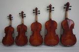 Gitarren-Violinen-Musikinstrument-elektrische Violine