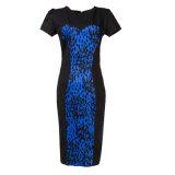 卸し売り製造者の女性の夏のプロムのセクシーなBodyconの服2017のプラスのサイズ
