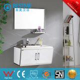 Gabinete de banheiro cinzento do aço inoxidável da cor (BY-B6005)