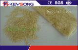 Machine de traitement nutritionnel du riz artificiel