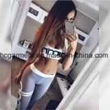 Roupa de desporto para mulheres, Gym Wear, Sports Tops / Pants